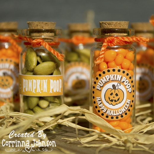 Pumpkin Poop Party Favors